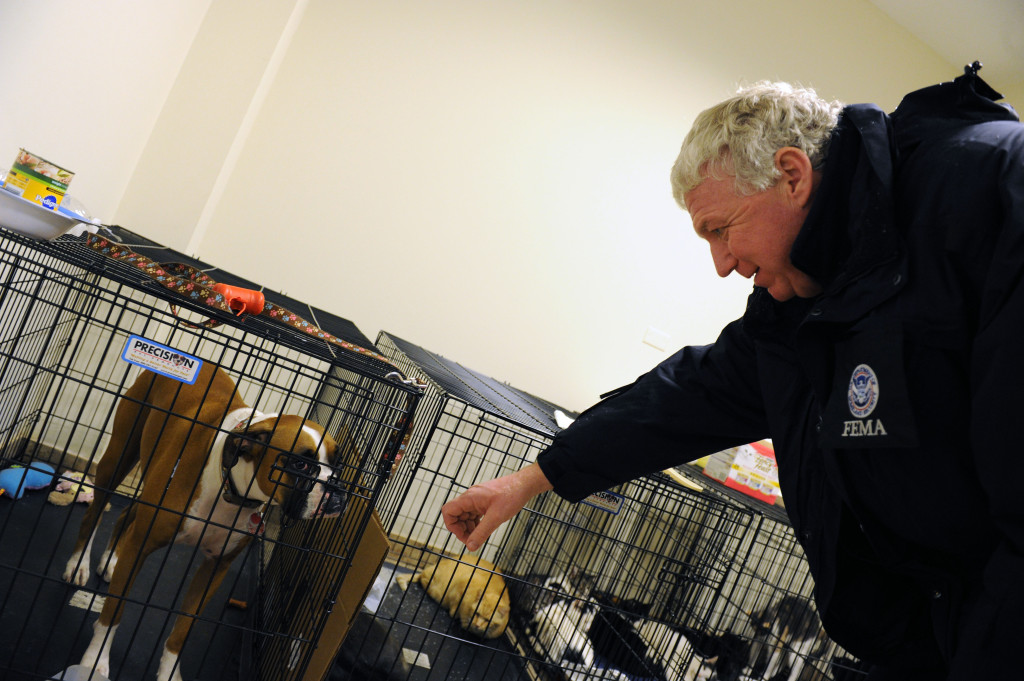 FEMA Deputy Director Rich Serino visiting a local animal shelter during a recent disaster. (Photo by Jodelyn Augustino, courtesy of FEMA)