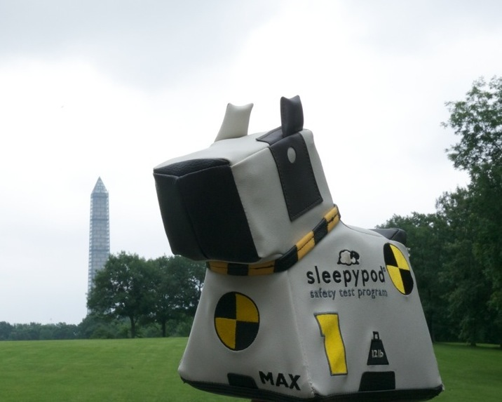 Crash Test MAX, Sleepypod's Crash Test Dog, visited the National Mall last year. In the backdrop is the Washington Monument, undergoing repairs. While the verdant National Mall is pet-friendly, many DC memorials like the Washington Monument do not allow pets inside their structures.
