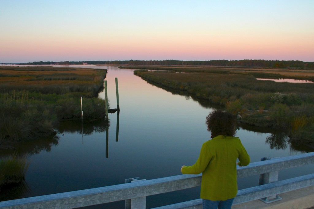 Scenic Stewart's Canal, part of the Harriet Tubman Underground National Monument located in Dorchester County, Maryland. (Photo: National Park Service)