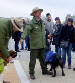 Pups 'n' Petals is a  dog-friendly, park ranger led walk during the annual Cherry Blossom Festival in Washington, D.C. (photo: NPS)