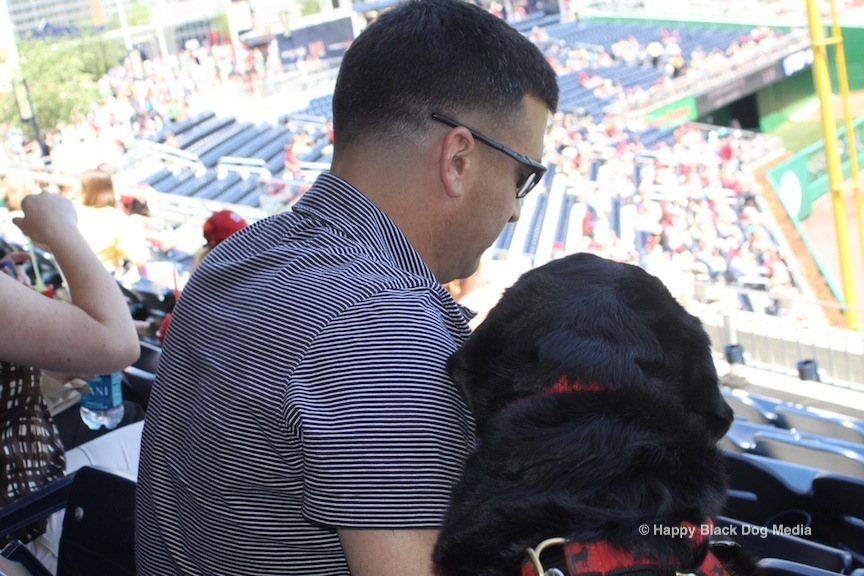Taking in a major or minor league baseball game with your dog offers a unique bonding opportunity. (Photo credit: Happy Black Dog Media)